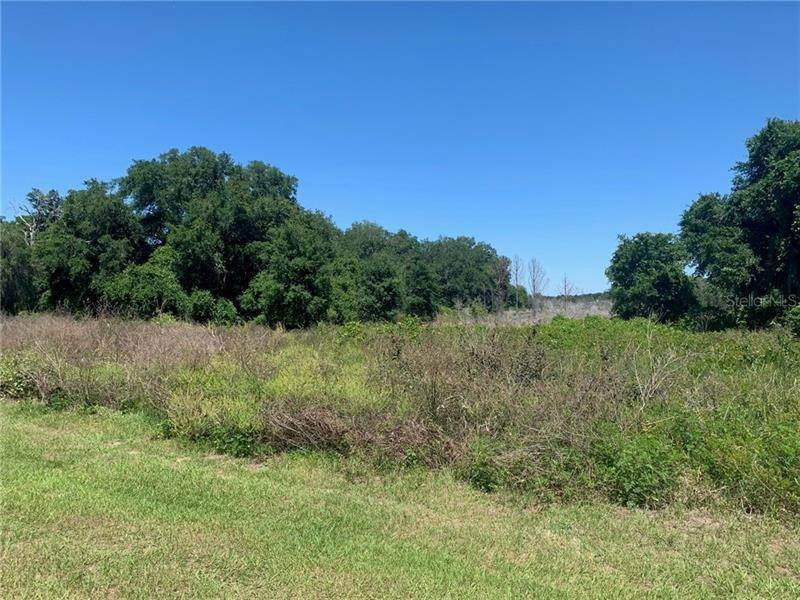 Land for Sale at Lot 31 LONG AND WINDING ROAD Groveland, Florida 34737 United States