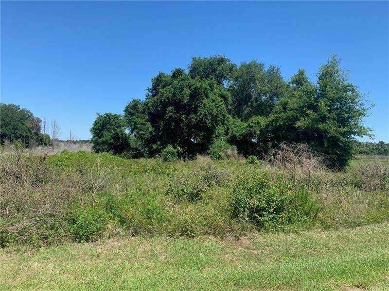 2. Land for Sale at Lot 31 LONG AND WINDING ROAD Groveland, Florida 34737 United States