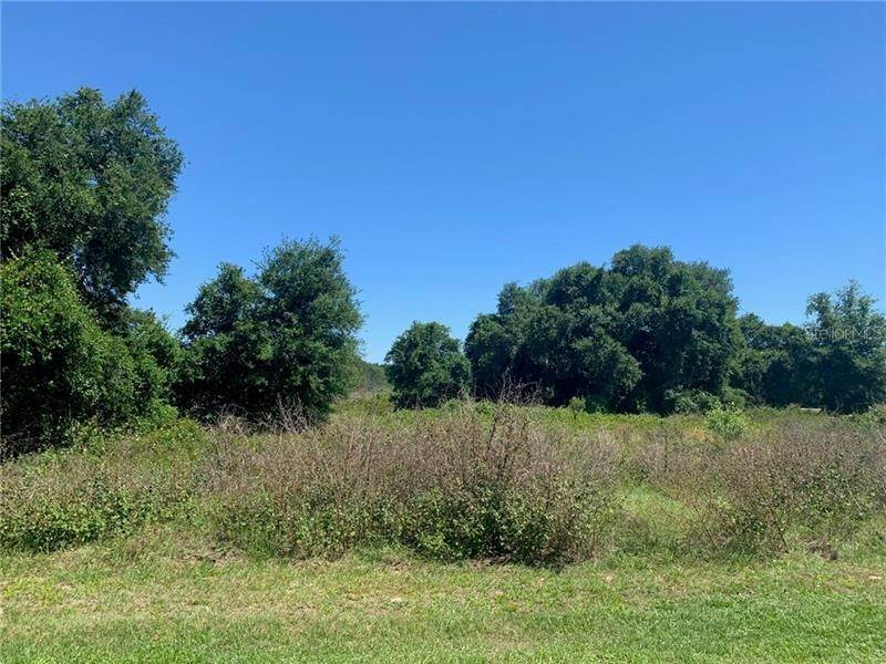 3. Land for Sale at Lot 31 LONG AND WINDING ROAD Groveland, Florida 34737 United States