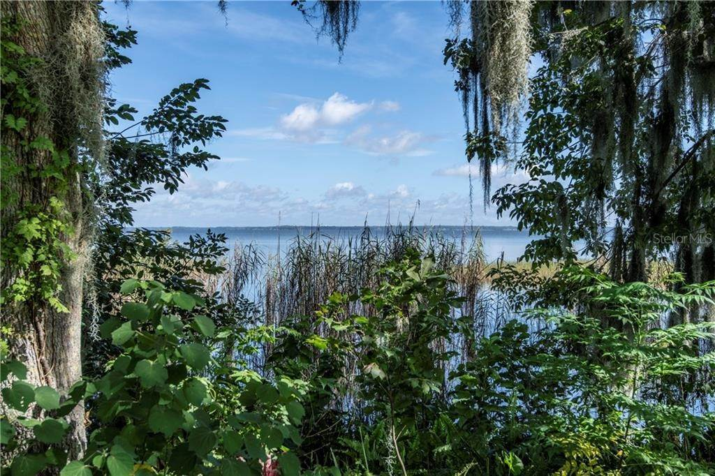 Land for Sale at LAKESHORE DRIVE Yalaha, Florida 34797 United States