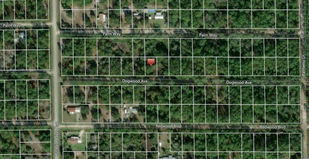 Terreno por un Venta en 314 DOGWOOD AVENUE Georgetown, Florida 32139 Estados Unidos