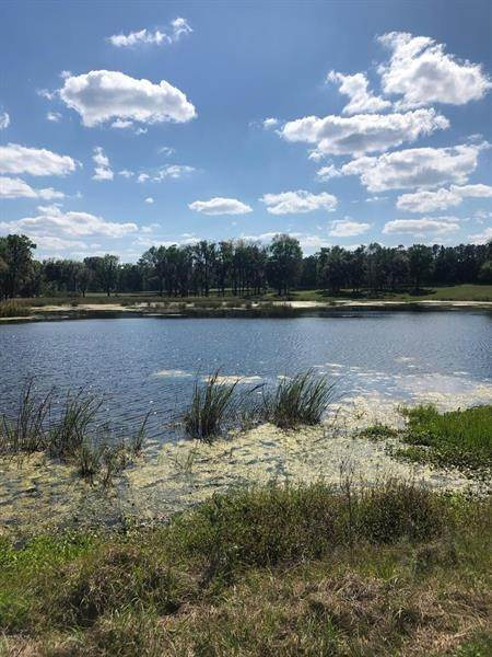 Land for Sale at 14920 W Highway 318 Williston, Florida 32696 United States