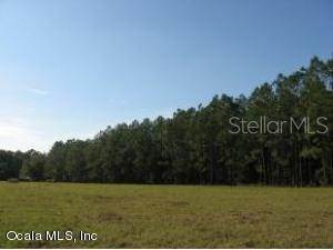 Land for Sale at SE 47th ST ROAD Ocklawaha, Florida 32179 United States