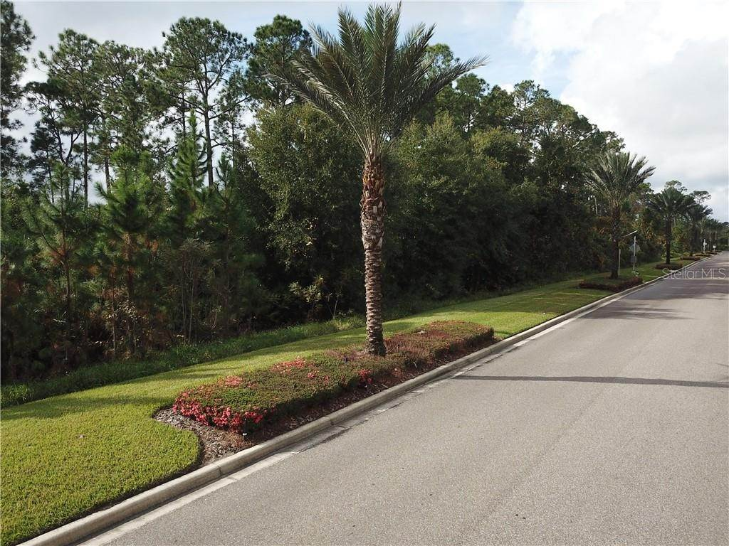 Land for Sale at 17500 GROVE BLOSSOM WAY Winter Garden, Florida 34787 United States