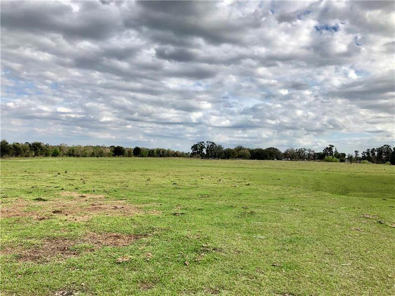 Land for Sale at 33100 TAYLOR GRADE ROAD Parrish, Florida 34219 United States
