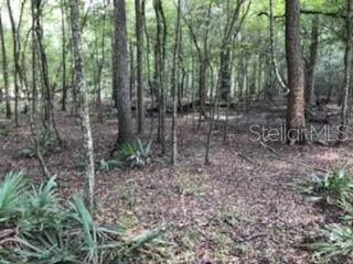 Land for Sale at NE UNASSIGNED UNI Old Town, Florida 32680 United States