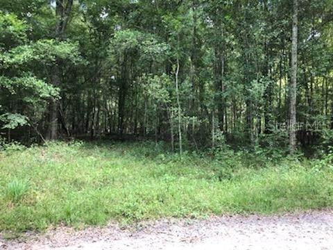 Land for Sale at UNASSIGNED Old Town, Florida 32680 United States