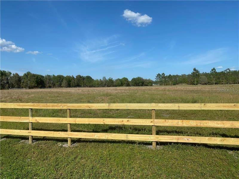 Land for Sale at CR 753 Webster, Florida 33597 United States