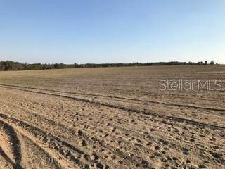 Land for Sale at 3742 SW OVERSTREET Avenue Greenville, Florida 32331 United States