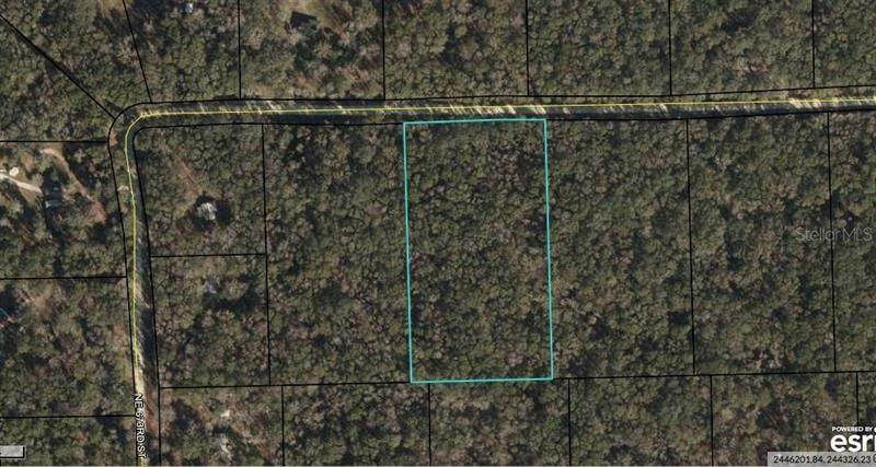 Land for Sale at NE UNASSIGNED Old Town, Florida 32680 United States