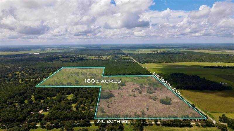 Land for Sale at 14430 NE 20TH STREET Williston, Florida 32696 United States