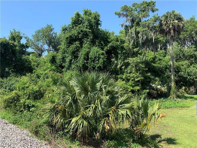 Land for Sale at N US 301 HIGHWAY Lochloosa, Florida 32662 United States