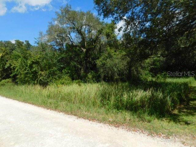Land for Sale at 6176 FAIRWAY DRIVE Ridge Manor, Florida 33523 United States