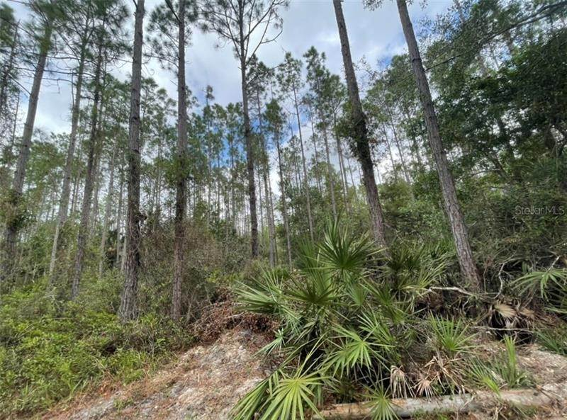 Land for Sale at Lot 47 SW 61ST STREET Cedar Key, Florida 32625 United States