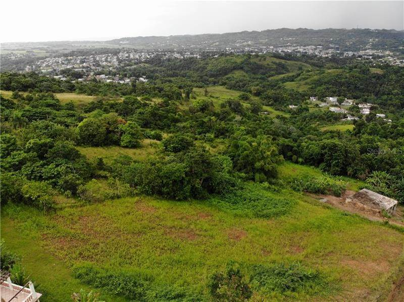 Land for Sale at PR 110 KM 9.8 BO. CRUZ SECT. ISLETA Moca, Puerto Rico 00676 Puerto Rico