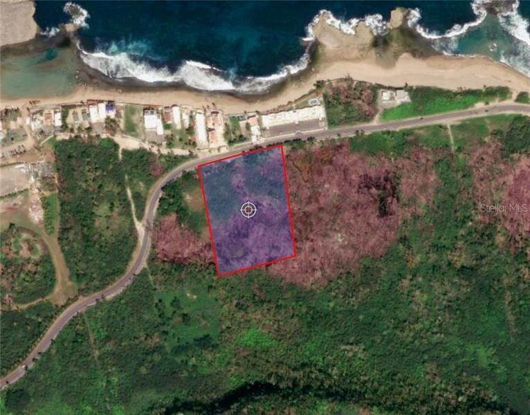 Land for Sale at Km 9.5 CARR 466 Isabela, Puerto Rico 00662 Puerto Rico