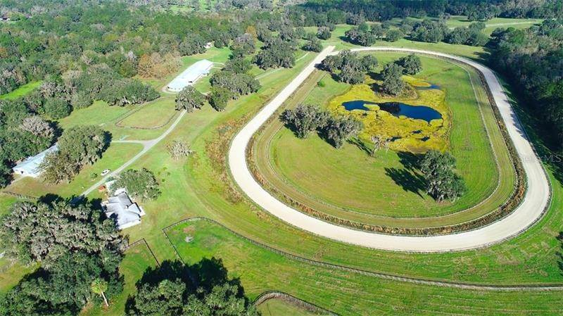 Farm for Sale at 10871 NW 198TH STREET Micanopy, Florida 32667 United States
