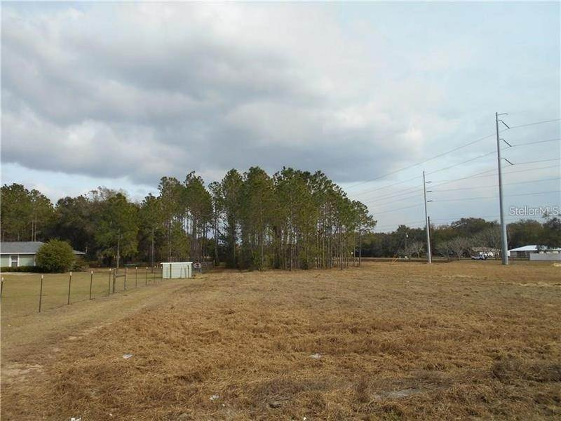 Land for Sale at 13023 COUNTY ROAD 44 Grand Island, Florida 32735 United States