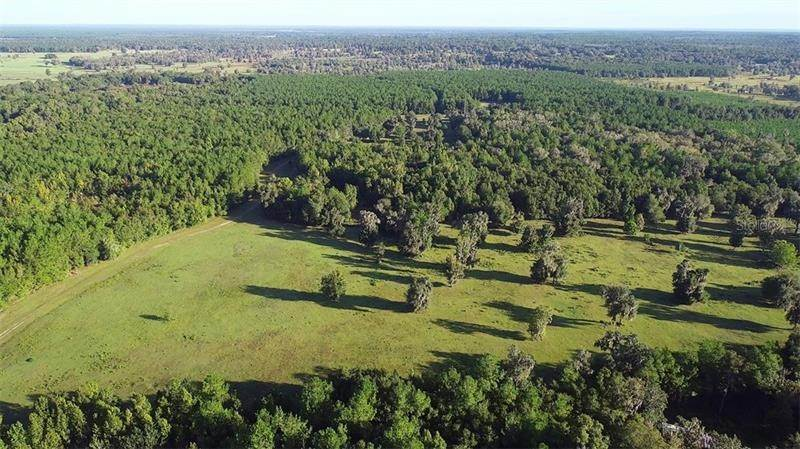 Land for Sale at Address Not Available Williston, Florida 32696 United States
