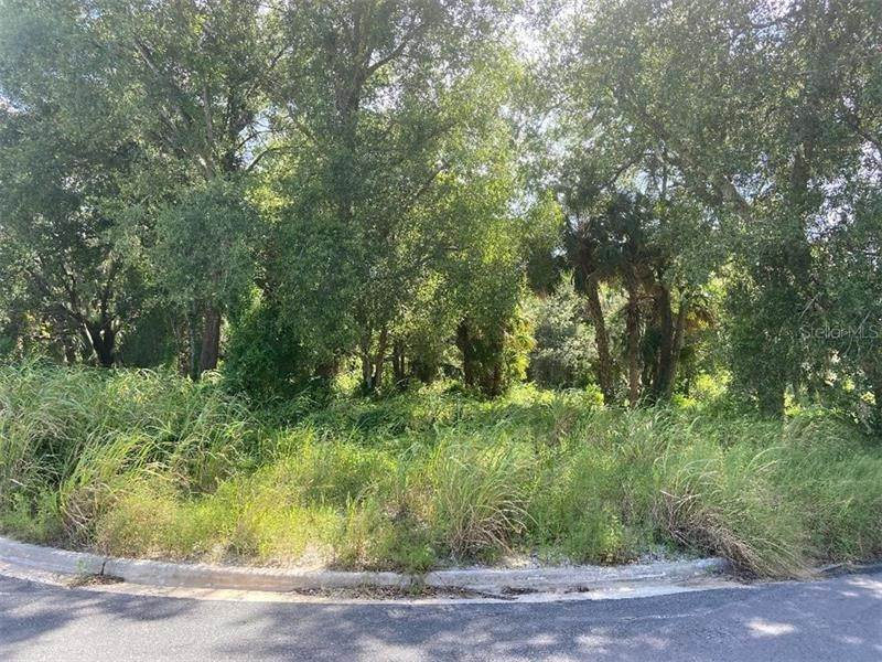 Land for Sale at FEARON AVENUE Mount Dora, Florida 32757 United States