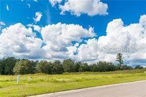 3. Land for Sale at GRAND SUMMIT Brooksville, Florida 34601 United States