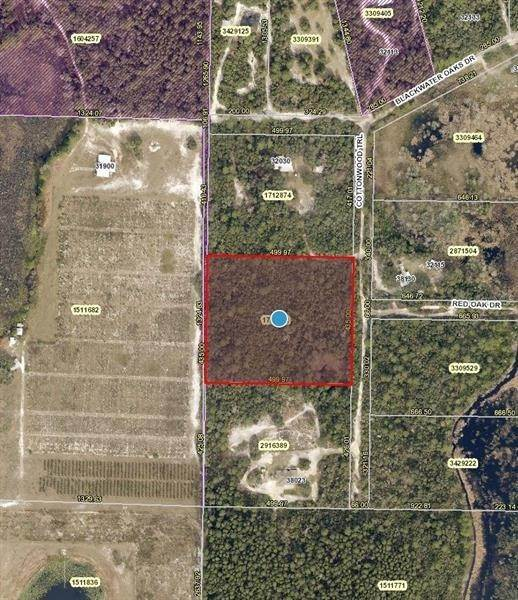 Land for Sale at COTTONWOOD TRAIL Eustis, Florida 32736 United States