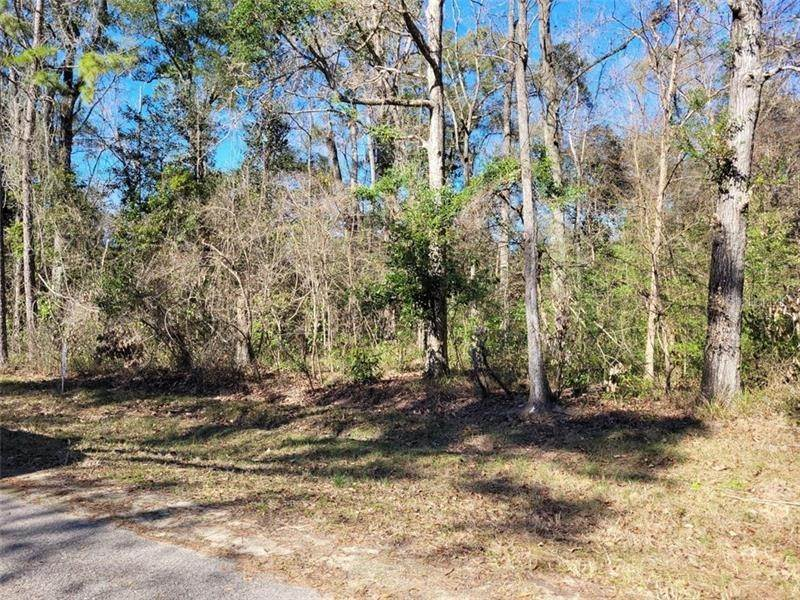 Land for Sale at Lot 41 NW 129TH Street Chiefland, Florida 32626 United States