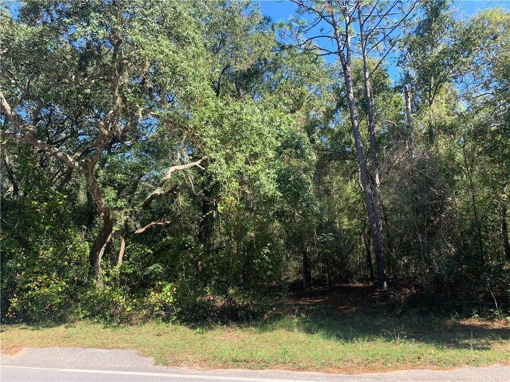 Land for Sale at 205 BADEN POWELL Hawthorne, Florida 32640 United States