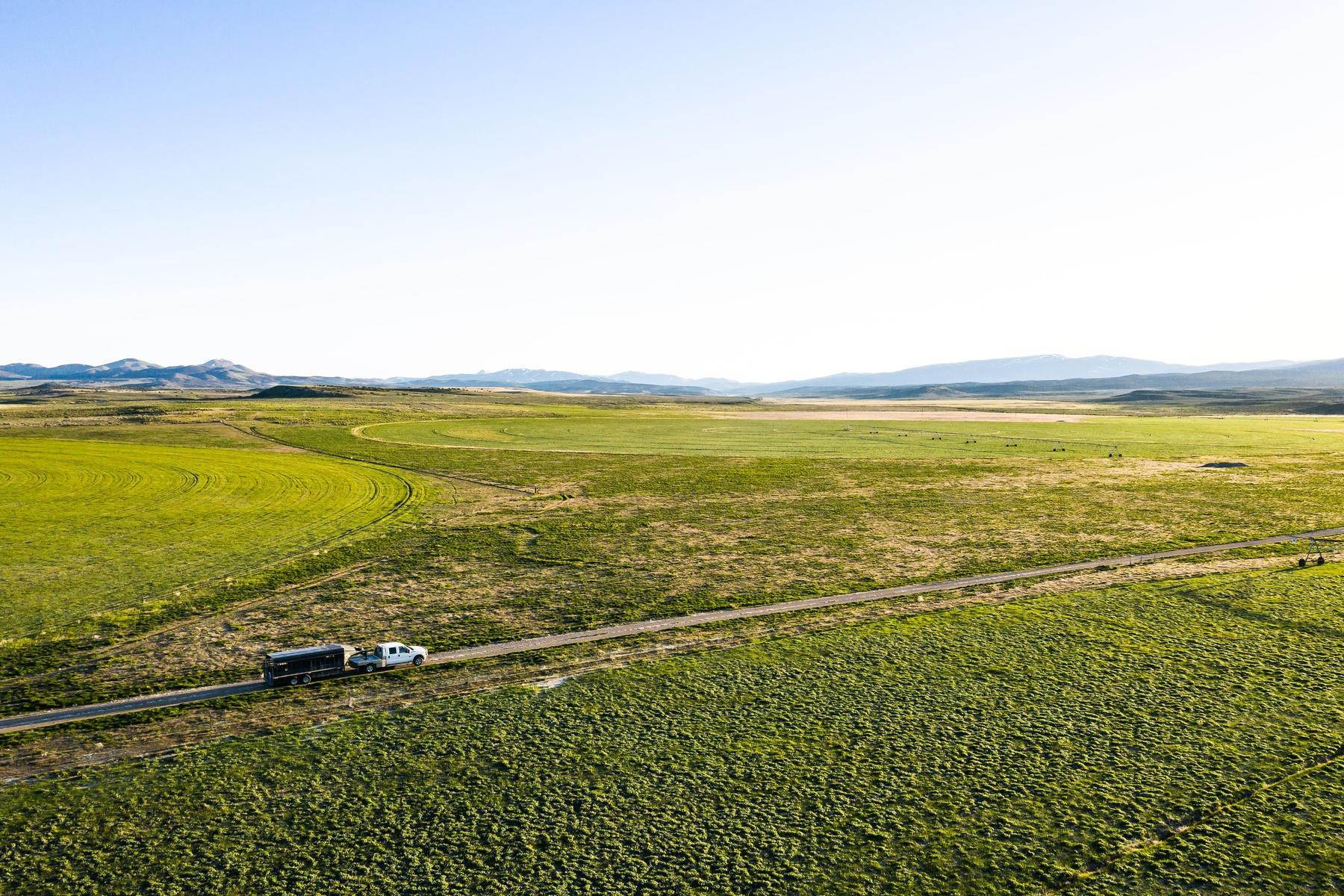 Farm and Ranch Properties for Sale at River View Ranch 7720 N Etna Road Grouse Creek, Utah 84313 United States